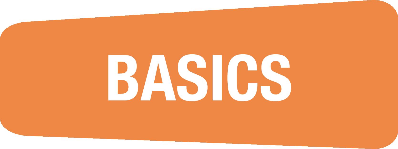 CyberPass Basics logo