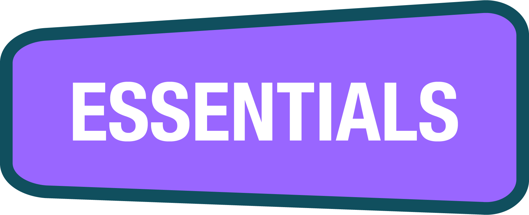 CyberPass Essentials logo