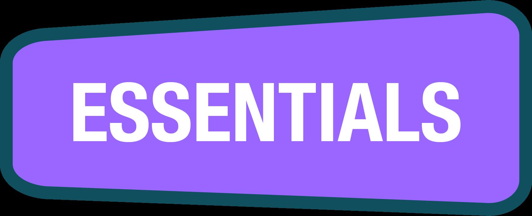 CyberPass Essentials logo